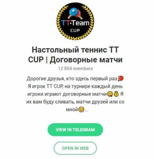 Фото канала Настольный теннис TT CUP в Телеграмме