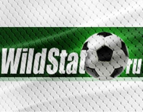 Отзывы о Wildstat.ru