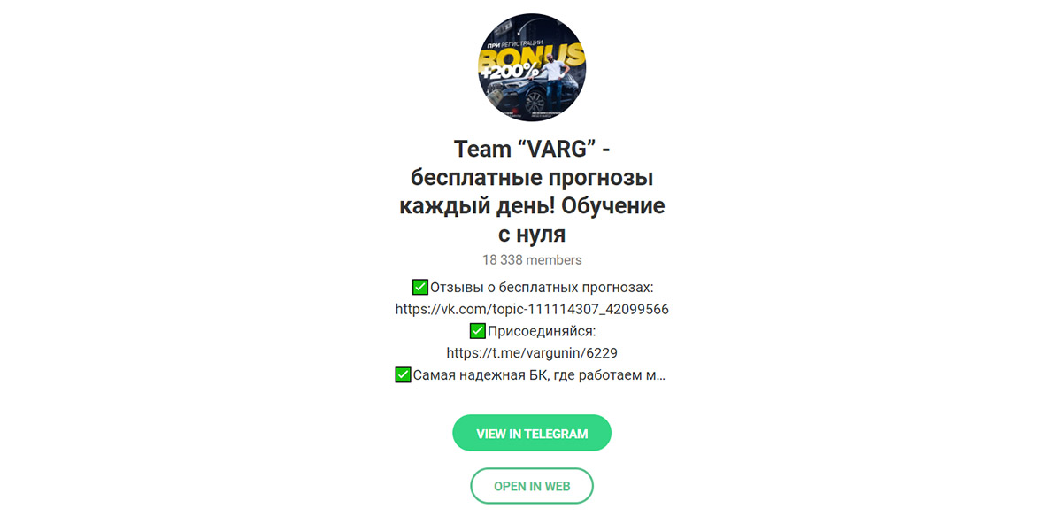 Телеграм канал каппера Варгунина проект Team Varg