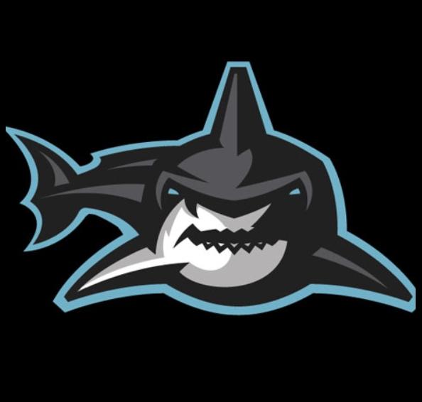 Отзывы о букмекерской конторе Shark-Bet.com