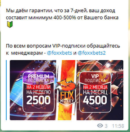 Fox Money статистика