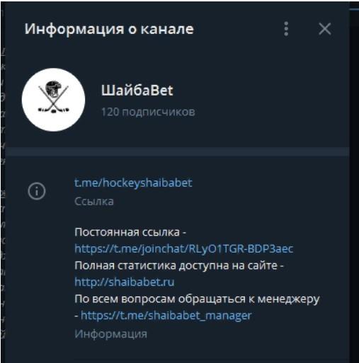 шайбабет информация о канале